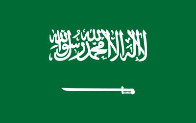 جهات الدعم والتمويل في السعودية