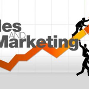التسويق والمبيعات